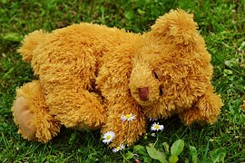 teddy-bear-792279__180