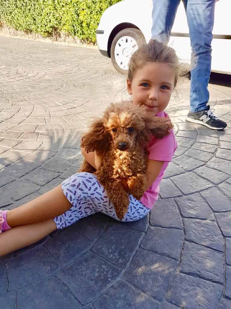 Crescere con un cane, il rapporto tra cane e bambino